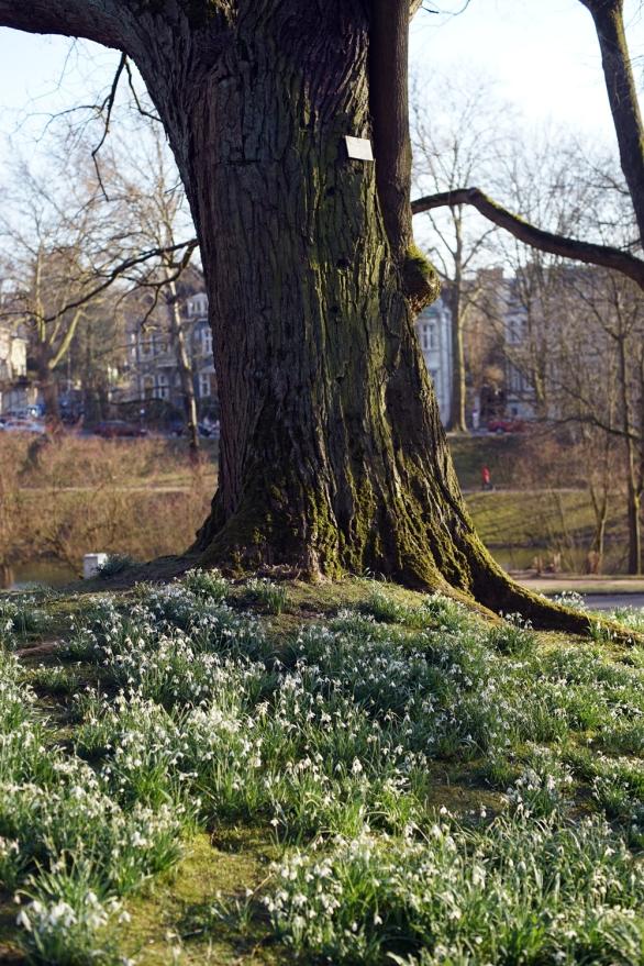 Bochum Stadtpark